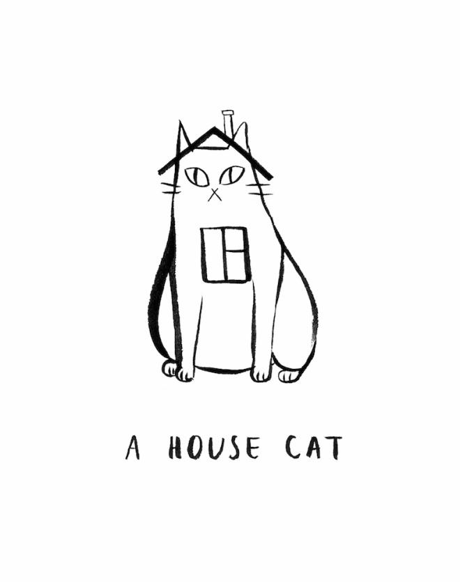 ahousecat-_s